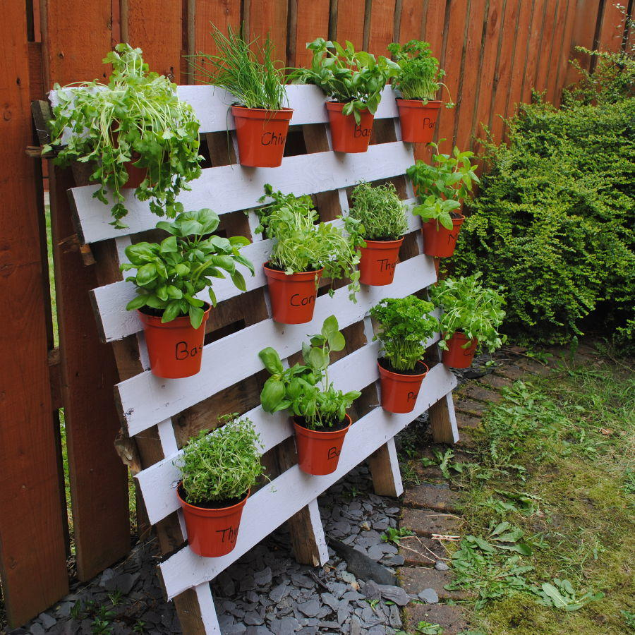 jardin vertical pale combinado