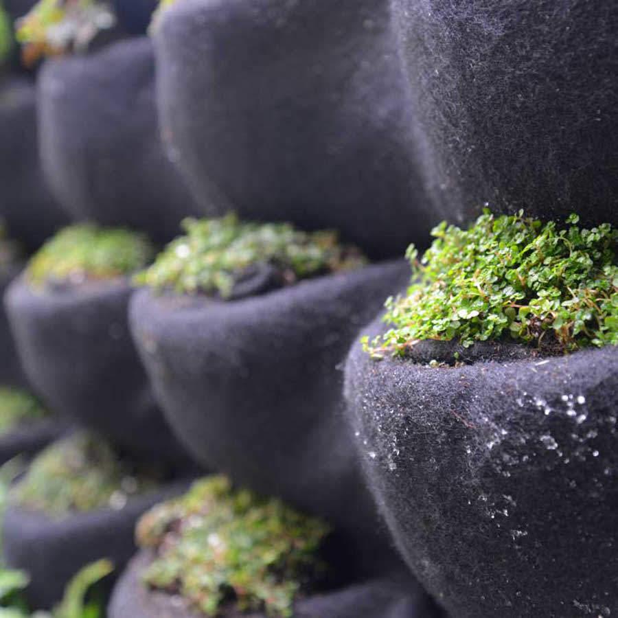 jardin vertical bolsillos