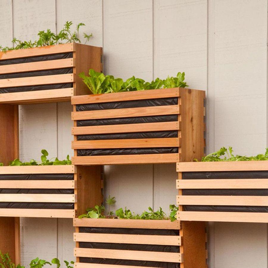 jardin vertical de cajones de fruta