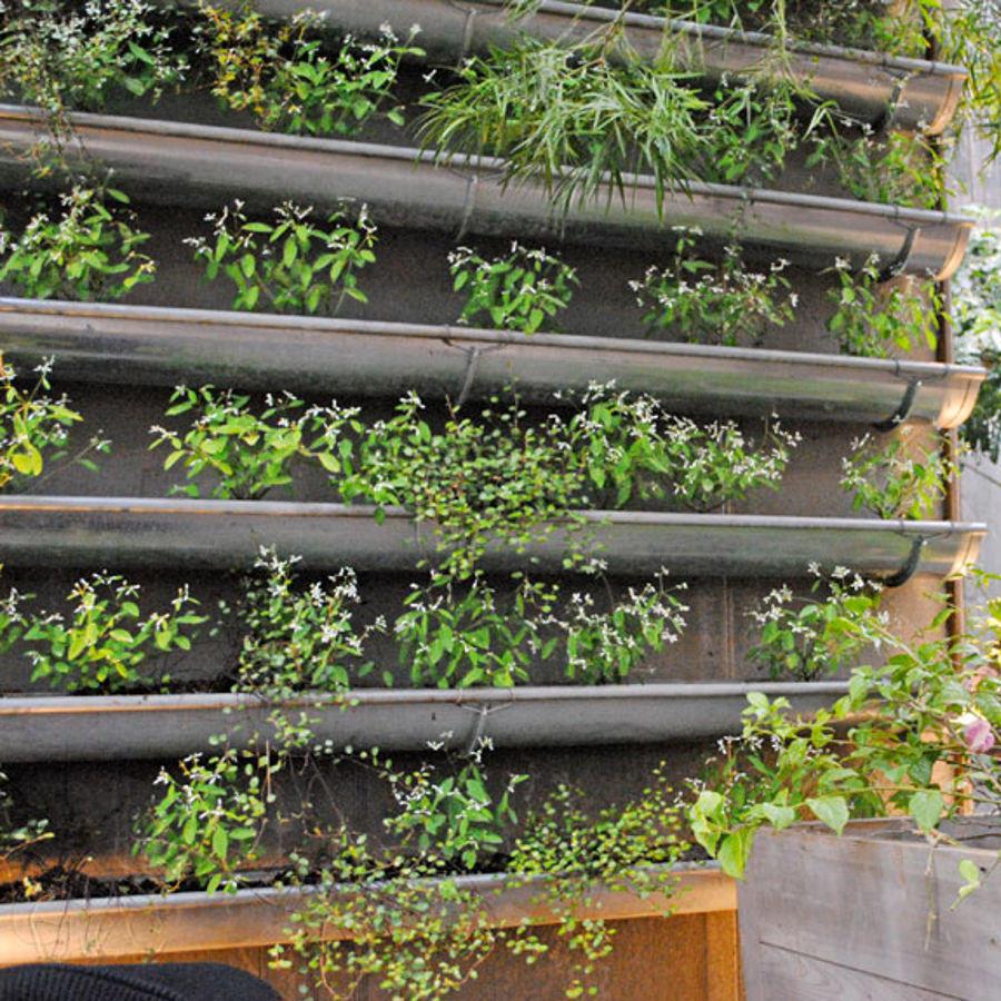 jardin vertical canalones